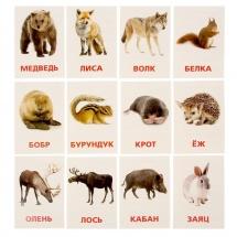 """Карточки """"Дикие животные"""", ЛасИграс"""