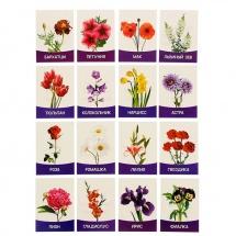 Обучающие карточки ЛасИграс Цветы садовые 16 шт