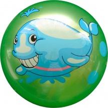 Мяч TashaToys с рисунком 25 см