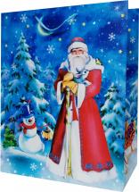 Пакет подарочный Дед Мороз 26х32 см