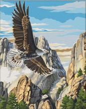 Картина по номерам Polly Полет орла 50х40 см