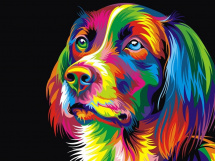 Картина по номерам Polly Радужная собака 50х40 см