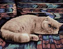 Картина по номерам Polly Персидский кот 50х40 см