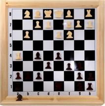 Шахматы Орловская ладья настенные демонстрационные