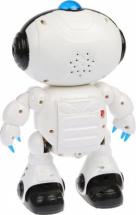 Робот Dance со светом и звуком