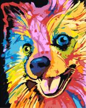 Картина по номерам Polly Радужный шпиц 50х40 см