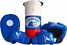 Детская боксерский набор Leosport №4, мешок 40х18 см, перчатки, лапа, шлем